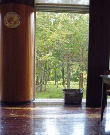 奥入瀬森のホテル窓から